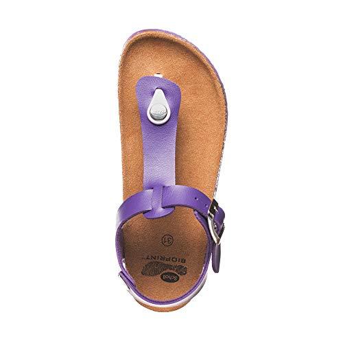 Sintetica Boa Scholl 32 Tg Kid Vista Pelle Violet nP147