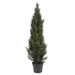 Nearly Natural 5292 Mini Cedar Pine Tree Indoor/Outdoor 45