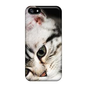 Hot Tpye Pretty Grey Kitten Case Cover For Iphone 5/5s