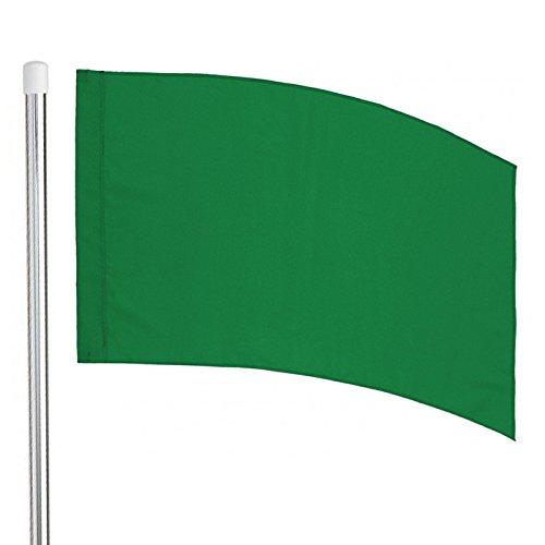 flag pole guard
