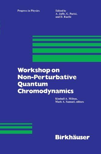 Workshop on Non-Perturbative Quantum Chromodynamics (Progress in Mathematical Physics)