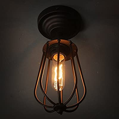 WinSoon Industrial Vintage Ceiling Light (with 1 bulb) Style Metal Cage Shade Art Painted Finish Fixtrue