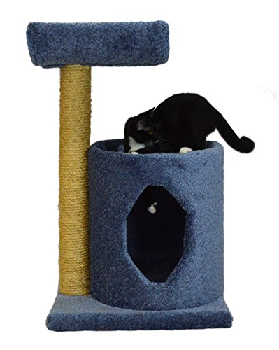 Molly and Friends MF-36-blue Two-Tier Scratching Post Furniture, Blue