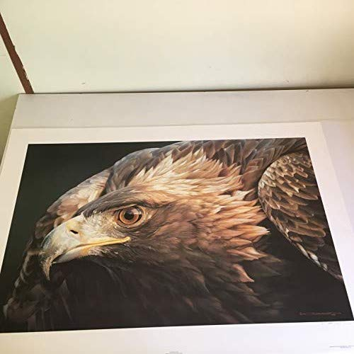 Limited Edition Print Sovereign Gold-Eagle-Carl Brenders