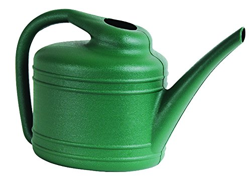 Watering Can, 1 Gallon, Fern (Watering Pitcher)