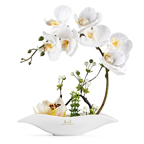 Louis Garden Artificial Silk Flowers Orchid Arrangement Phalaenopsis Bonsai (cream) (Orchid Silk Plant Pot Cream)
