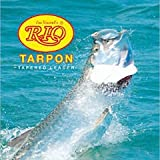 Rio Fly Fishing Tarpon 6' 80Lb Fluorocarbon Shock 3 Pack Fishing Leaders, Clear