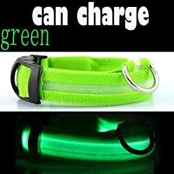 PEHTEN Glowing Pet Collar Dog USB Charge Light Night Safety Flashing in Dark Lighted Cat Collar LED Dog Collars for Small Dog Accessory Green Charge XL