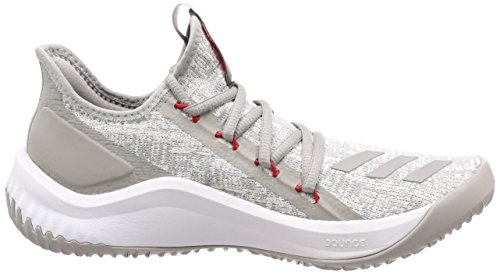 adidas Men's Dame D.O.L.L.A, LGH Solid Grey/MGH Solid Grey/Scarlet Lgh Solid Grey/Mgh Solid Grey/Scarlet