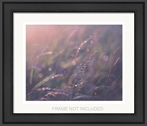 Purple Botanical 11