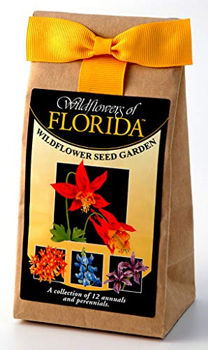 Florida Wildflower Seed Mix - A Beautiful Collection of Twelve Annuals & Perennials - Enjoy the Natural Beauty of Florida Flowers in Your Own Home Garden