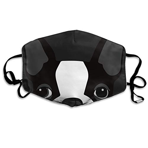 SDQQ6 Boston Terrier and French Bulldog Mouth Mask Unisex Printed Fashion Face Mask Anti-dust Masks -
