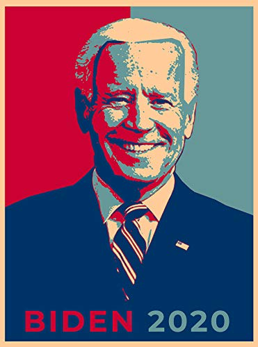 Hat Shark United States USA President Presidential Election Voting 2020 Joe Biden Democratic Party White House Candidates 18x24 - Vinyl Print Poster (Biden)