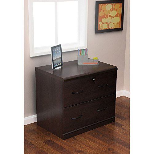 Z-Line Designs 2-Drawer Lateral File Espresso Cabinet with Black Accents