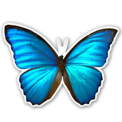 Blue Morpho Butterfly Beautiful Vinyl Sticker - Car Window Bumper Laptop - SELECT SIZE (Stickers Butterfly Vinyl)