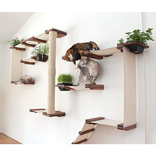 CatastrophiCreations Cat Mod Garden Complex Handcrafted Wall Mounted Cat Tree Shelves with Planter for Cat Grass, English Chestnut/Natural, One -
