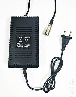 Amazon.com: MingYang Motor 36 V Cargador de Batería Razor ...