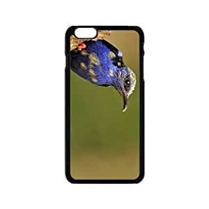 Lovely Bird Hight Quality Plastic Case for Iphone 6