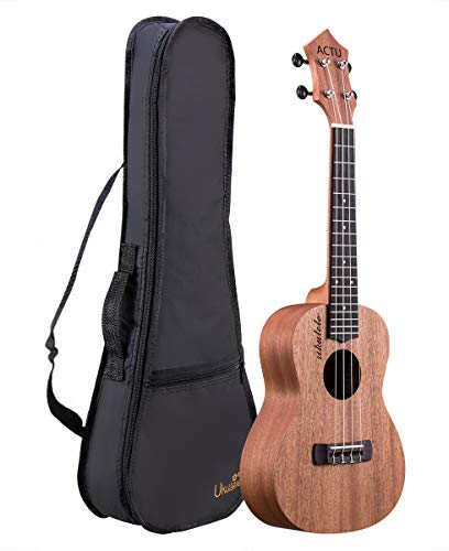 (ACTUTECH Professional 23 Inch Concert Ukulele Mahogany Rosewood Small Guitar for Beginner with Gig)