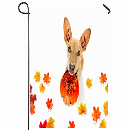 - Ahawoso Garden Flag 12x18 Inches Joke Autumn Chihuahua Dog Ghost Scary Spooky Holidays Candle Celebration Costume Dead Demon Design Decorative Seasonal Double Sided Home House Outdoor Yard Sign