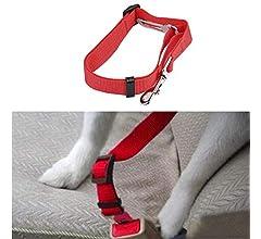 Jaminy cinturón de Seguridad para Perro, cinturón de Seguridad ...