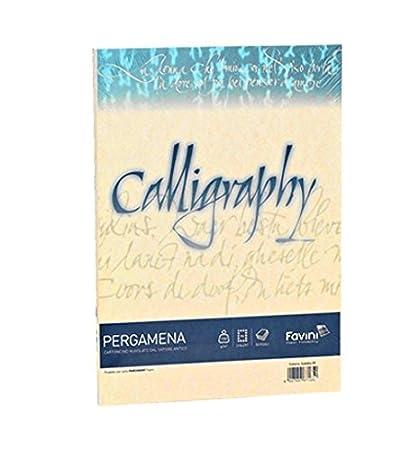 Carta Calligraphy Pergamena 90 gr. 50 ff Bianco Memotak