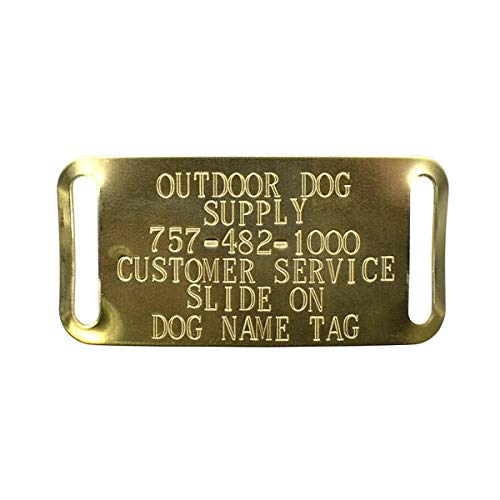 Custom Brass Slide-On Personalized Dog ID Tags for 1