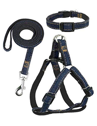Dormencir Durable Basic Leashes Harness Set Pet Dog Slip Rope Leash Adjustable Strong Dogs Leash Collar for Small Medium…