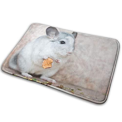 EWFXZq Chinchilla Doormats Anti-Slip House Garden Gate Carpet Door Mat Floor Pads 15.7