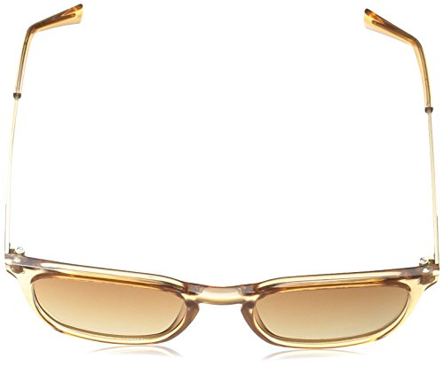 Crystal Klein Square Sunglasses R367s Unisex Caramel adult Calvin fBdnSFxqq