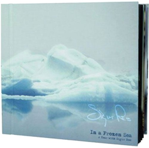 In a Frozen Sea: A Year with Sigur Ros [Vinyl] by Artist In Residence