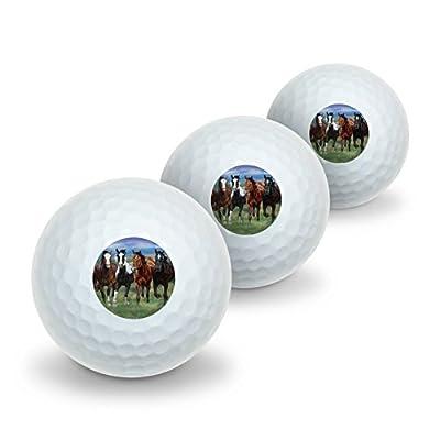 GRAPHICS & MORE Horses Running Wild Novelty Golf Balls 3 Pack