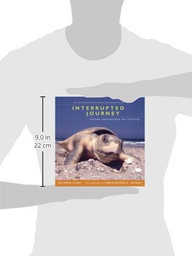 Interrupted Journey: Saving Endangered Sea Turtles: Kathryn Lasky ...