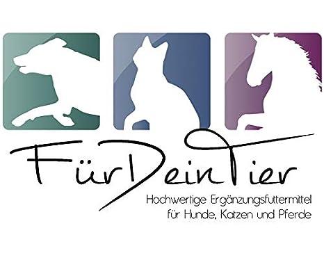 FeliMove Sparbundle para gatos: 1 x FeliMove urinario y 1 x ...