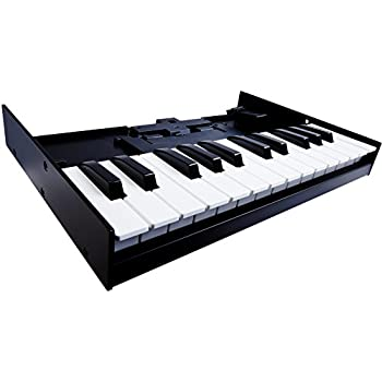 Roland 25-Key Portable Keyboard K-25M