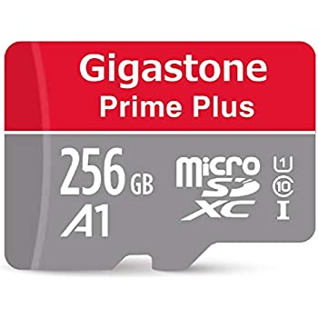 Gigastone Micro SD Card 256GB Micro SDXC A1 V10 U1 C10 High Speed Memory Card Class10 UHS-I