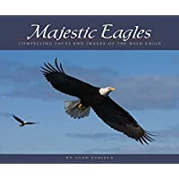 Majestic Eagles: Compelling Facts and Images of the Bald Eagle