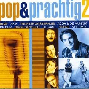 Various Pop and Prachtig Van De Jaren 90