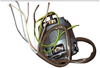Fagor Brandt Vedette saltar de-dietrich – Motor de campana extractora Fagor: Amazon.es: Hogar