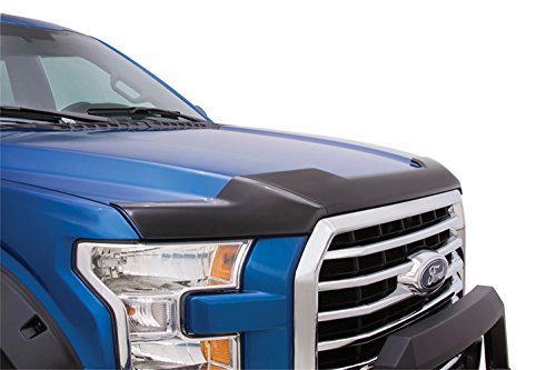 Hood Guard Bug Deflector (Lund 538096 Hood Defender Smoke Hood Shield)