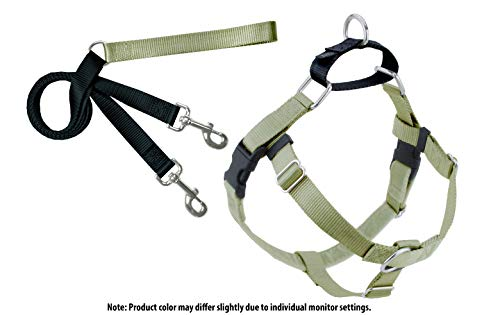 2 Hounds Design Freedom No-Pull Dog Harness with Leash, Large, 1-Inch Wide, Tan