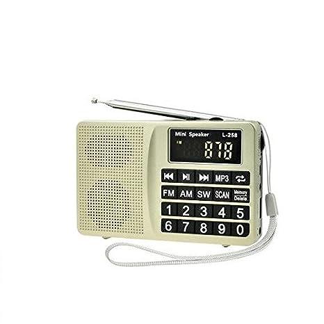 Amazon.com: LCJ Radio portátil FM AM SW con memoria y ...