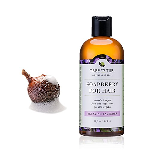 Organic Shampoo - Soft, Shiny Hair with pH Balanced All Natural Shampoo for Dandruff, Dry, Itchy Scalp, Psoriasis, Eczema, Sensitive Skin, from Soapberry / Soap Nuts - Lavender 11oz - Tree to Tub