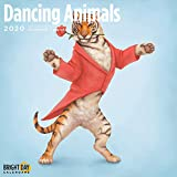 Kids/Family Themed Wall Calendars by Bright Day Calendars 16 Month Wall Calendars 12 x 12 Inches (Dancing Animals 2020)