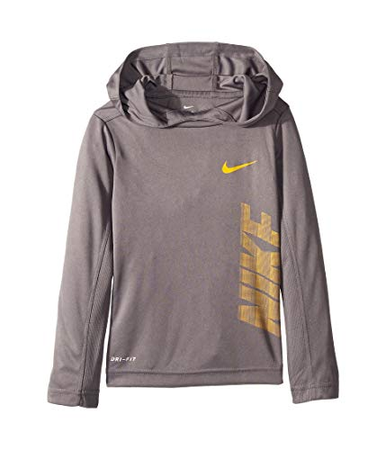 (NIKE Kids Baby Boy's Dri-FIT Long Sleeve Pullover Hoodie (Toddler) Gunsmoke 4T)