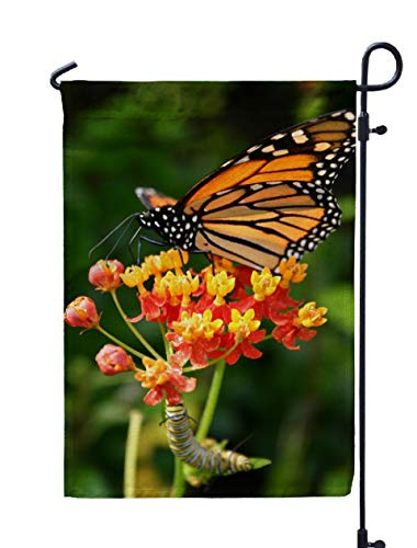 ROOLAYS Outdoor Seasonal Garden Flags Stands Monarch Butterfly Caterpillar Double Sided Colorful Holiday Yard Flag 12X18 inches