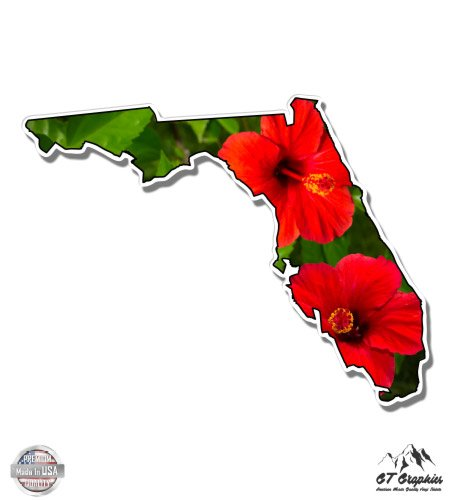 - Florida Shape Red Hibiscus - 5