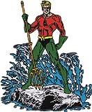 Aquaman DC Comics Iron On Patch - Superhero Ocean Pose Applique