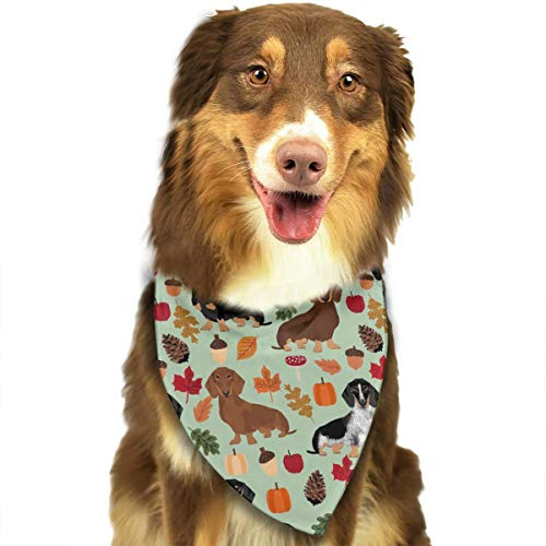 (OURFASHION Dachshunds Dog Autumn Leaves Cute Dogs Bandana Triangle Bibs Scarfs Accessories for Pet Cats and)