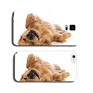 Golden Retriever dog on his back cell phone cover case iPhone6 Plus